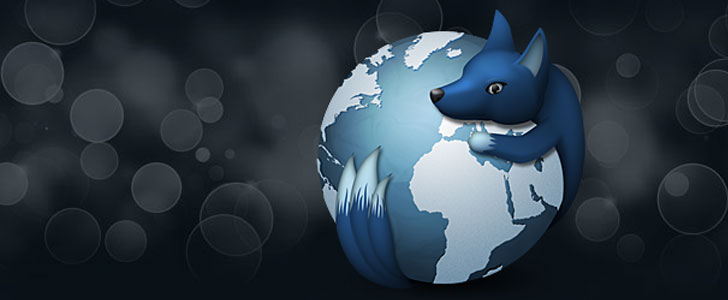 What-is-WaterFox-Project