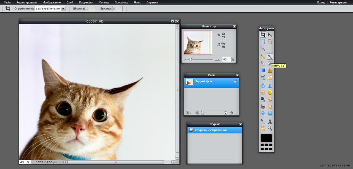 pixlr-editor2