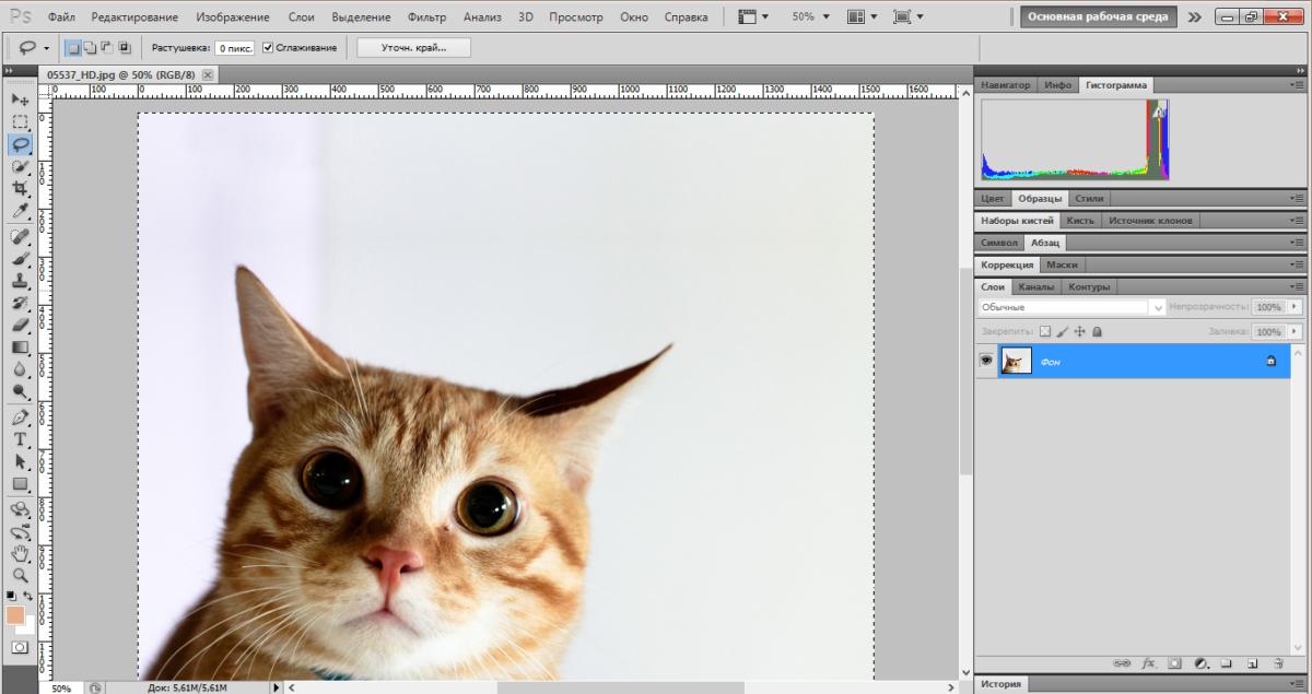 cut-background-photoshop (2)
