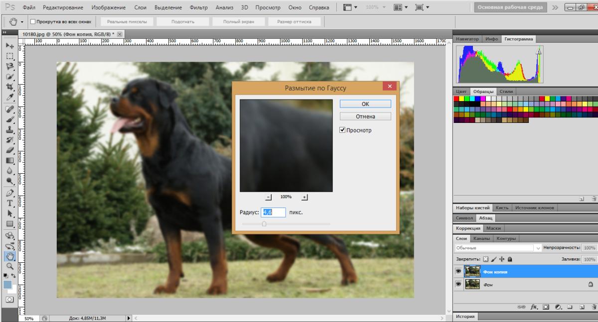 blur-background-photoshop (2)