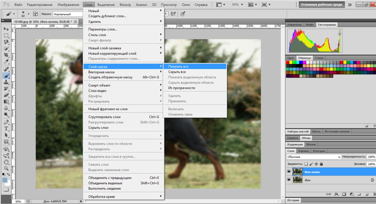blur-background-photoshop (3)