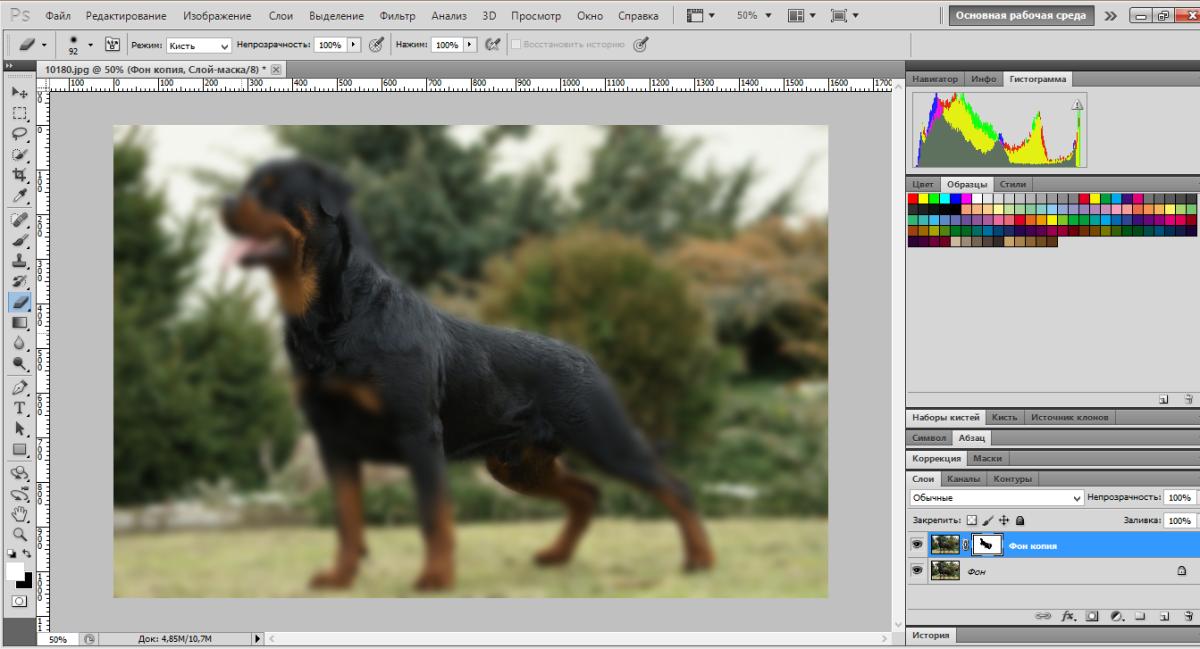 blur-background-photoshop (4)