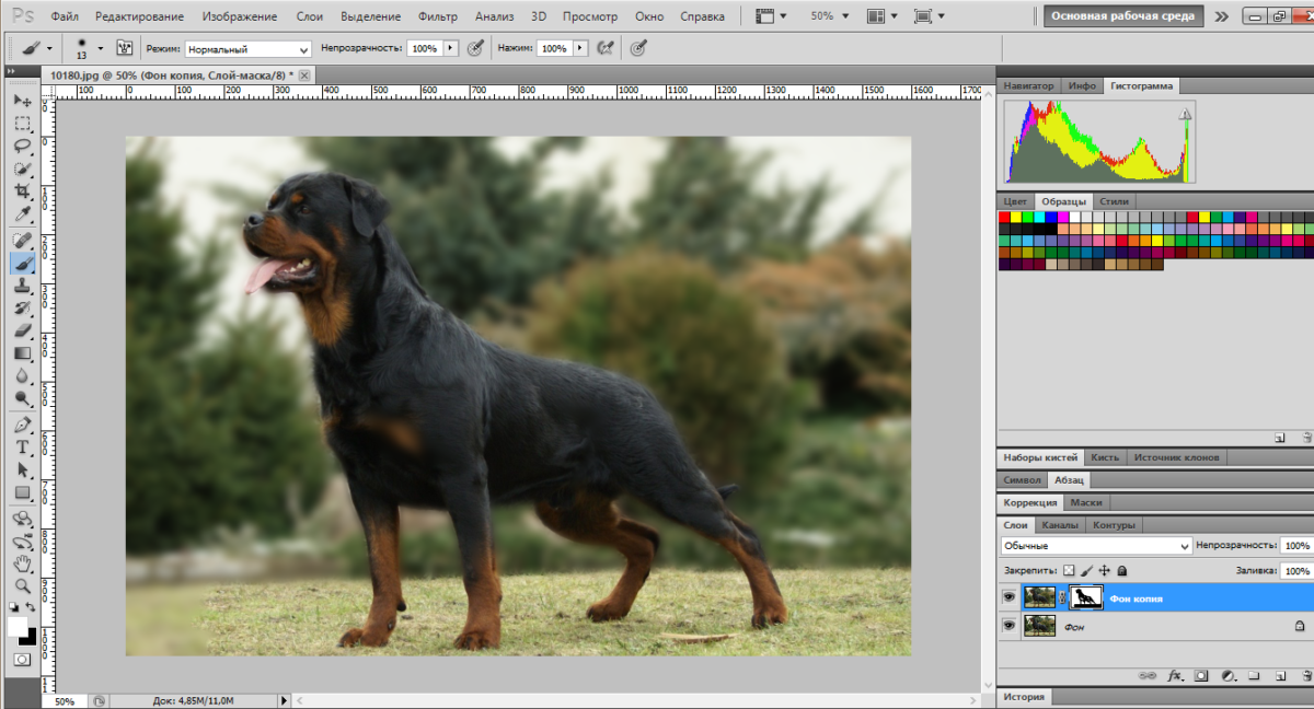 blur-background-photoshop (5)