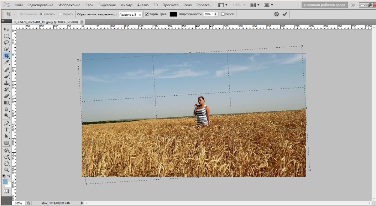 crop-photo-photoshop (3)