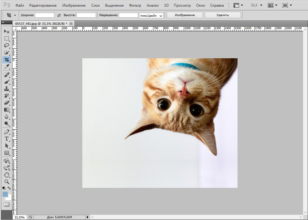 rotate-photo-photoshop (4)