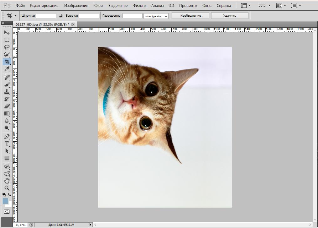 rotate-photo-photoshop (5)