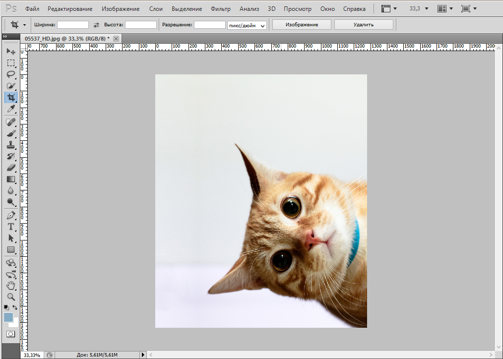 rotate-photo-photoshop (6)