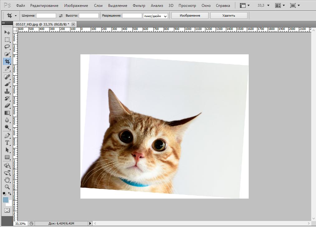 rotate-photo-photoshop (8)