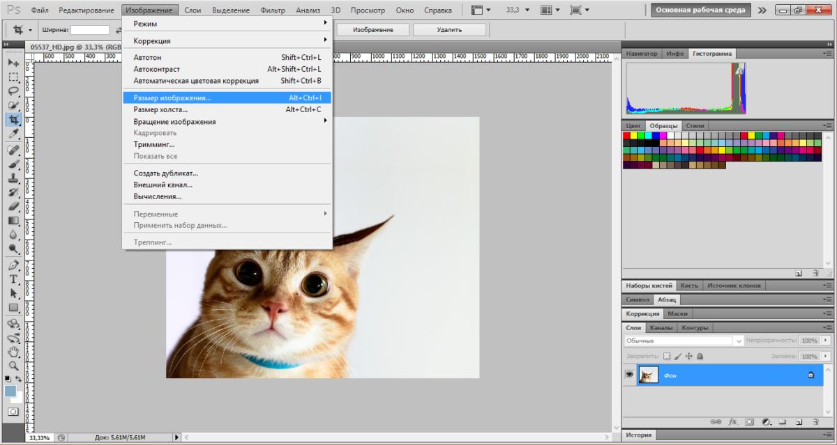 small-photo-photoshop (2)
