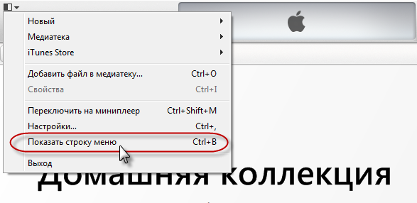 kak-polzovatsya-itunes-na-komputere-2